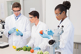 MASTER'S of SCIENCE in FOOD and NUTRITIONAL SCIENCE